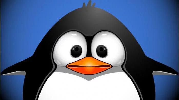 Последний апдейт Google не связан с Penguin